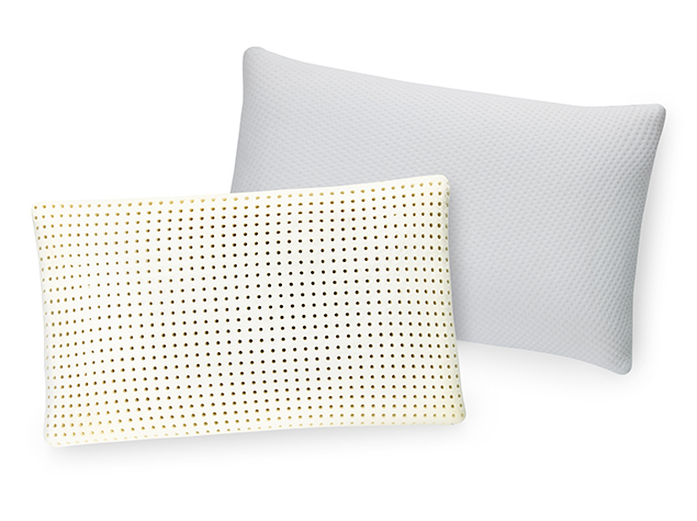Ventilated Memory Foam Pillow - Inside and Cover